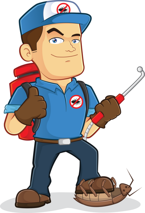 Image result for insect exterminators